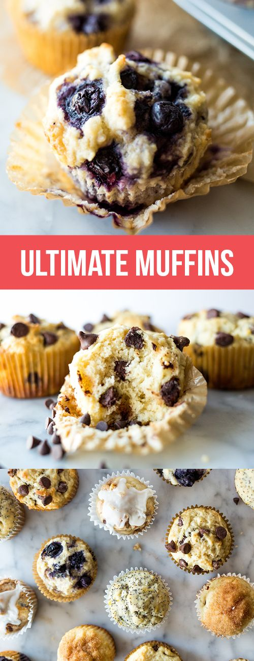 This Ultimate Muffin recipe is THE master muffin base that is perfectly flavorful, tender, and moist. The flavor and add-in options are limitless!