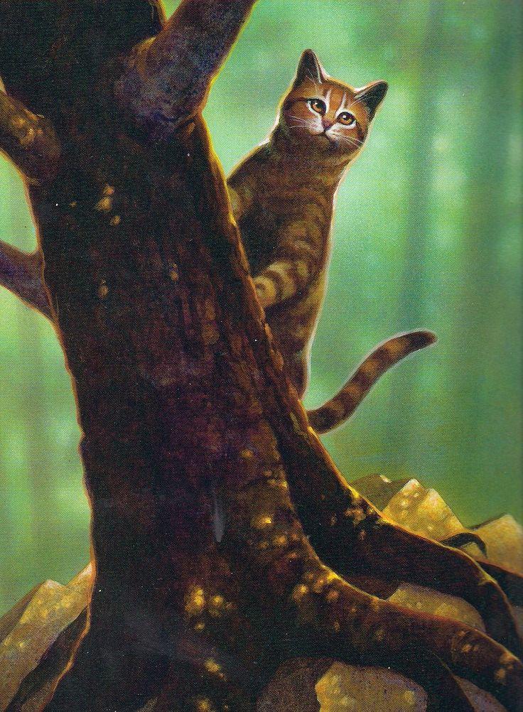 Warrior Cats Fetzenstern