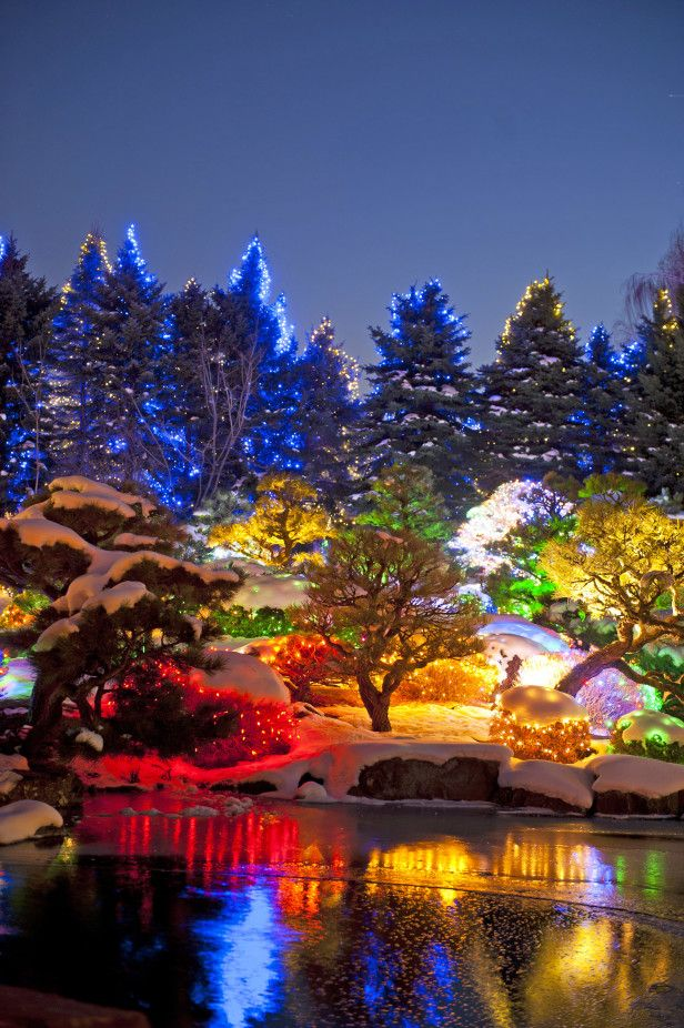 Holiday Road Trip: Blossoms of Lights at the Denver Botanic Gardens --> http://www.hgtvgardens.com/christmas/light-bright-garden-light-shows?s=33&soc=pinterest
