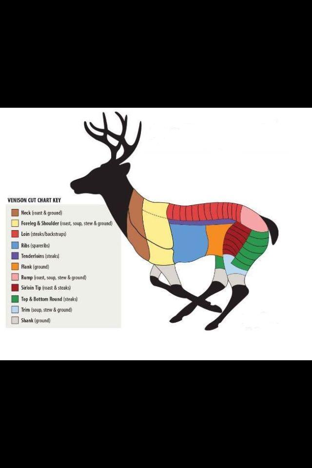 Venison Butchering Chart!
