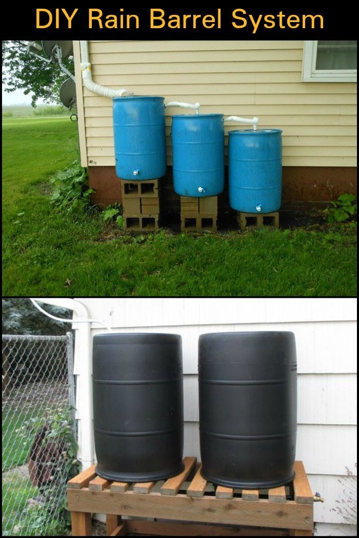 Easy To Build Rain Barrel System Rain Barrel System Rain Barrel Rainwater Harvesting