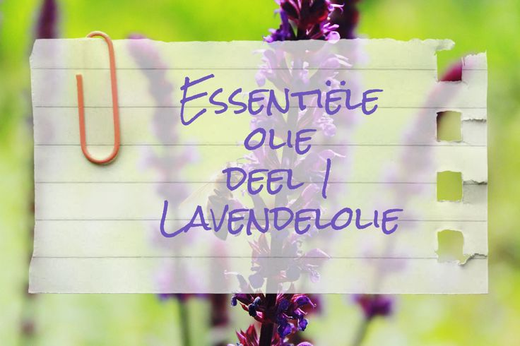 Lavendelolie is veelzijdig, te gebruiken in homemade natuurlijke verzorgings- en schoonmaakproducten maar ook bij allerhande ongemakken.