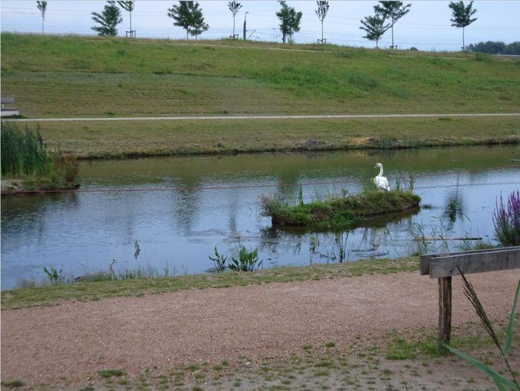 Annie MG Schmidtpark Berkel en Rodenrijs, Tuin van Floddertje Zwaan