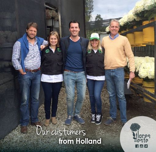 We are very happy to have received this visit from our customers from Holland! #Hydrangeas #Flowers #Holland