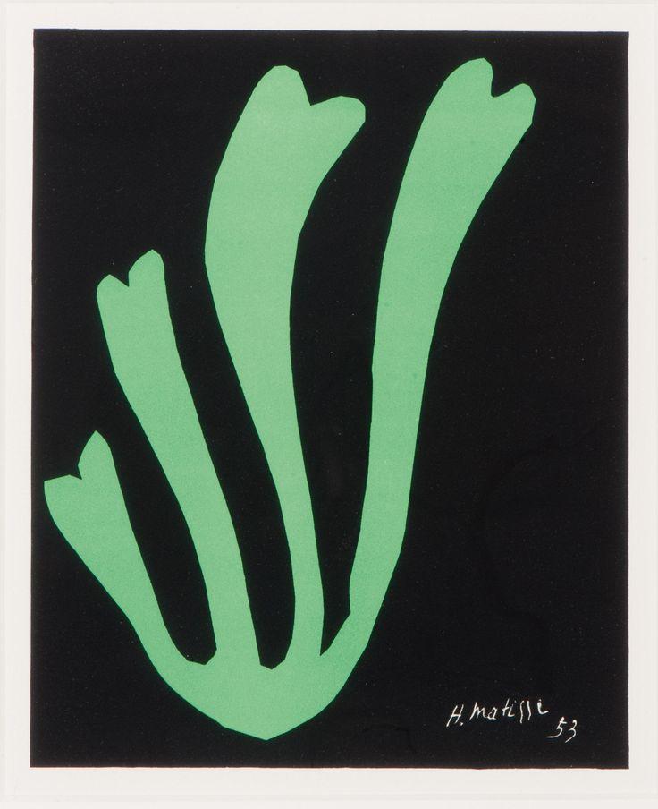 Henri Matisse Algue Verte
