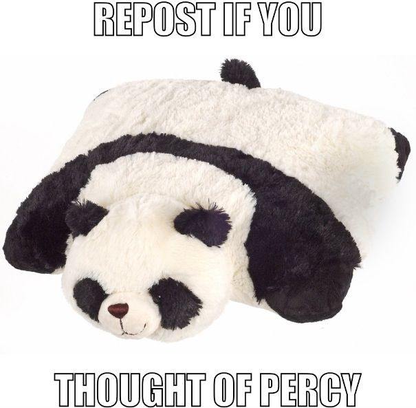I had a slumber party with fangirls, and there was a panda pillow pet in the room. xD It was wonderful.