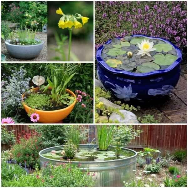 Mini Gartenteich bauen – kleine Oasen im Garten oder auf dem Balkon