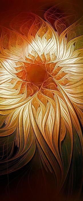 Golden Glory / Fractal art by Amanda Moore