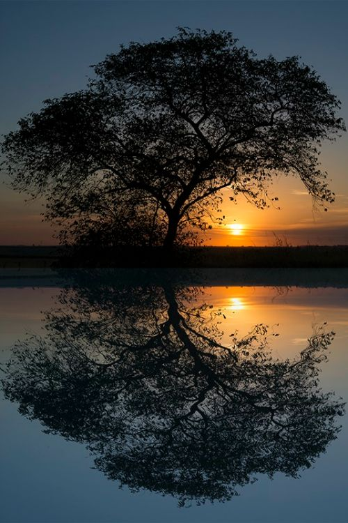 Sundown reflection