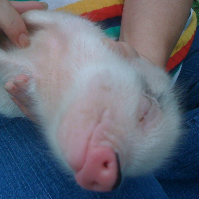 That will do pig :) <3 my baby!