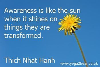 Awareness is like the sun when it shines on things they are transformed.   Thich Nhat Hanh