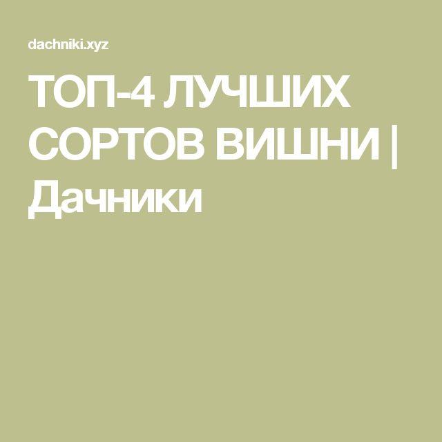 ТОП-4 ЛУЧШИХ СОРТОВ ВИШНИ | Дачники