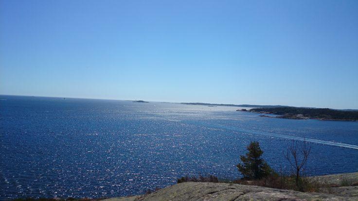 Sommer på Odderøya