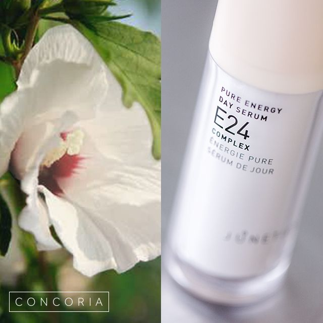 Flower's aren't just for Mother's Day. Junetics is composed of active Hibiscus plant stem cells that provide regenerative power and antioxidant benefits. Www.myconcoria.com/2044 #Junetics #E24Complex