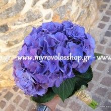 Myrovolos Shop