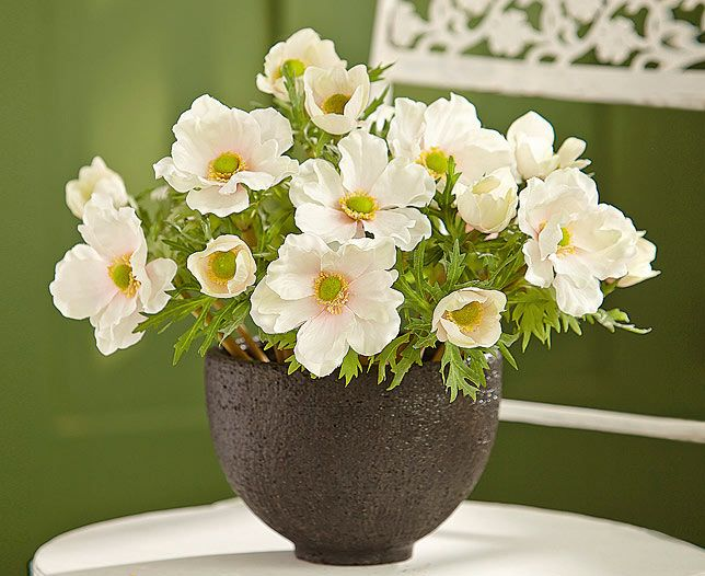 Cool and classic, sophisticated and stylish - this anemone bowl matches the mood in a variety of surroundings. Elegant as a dining room centrepiece or on a coffee