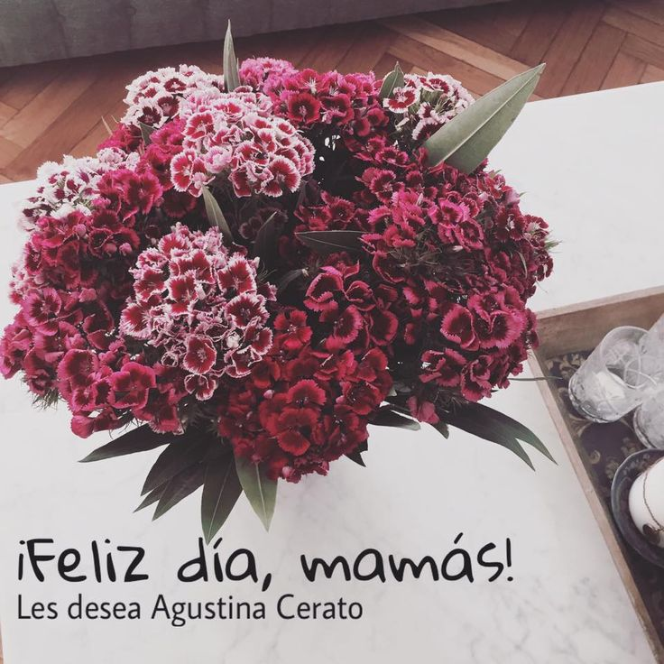 17 Best images about Agustina Cerato Fechas especiales on Pinterest
