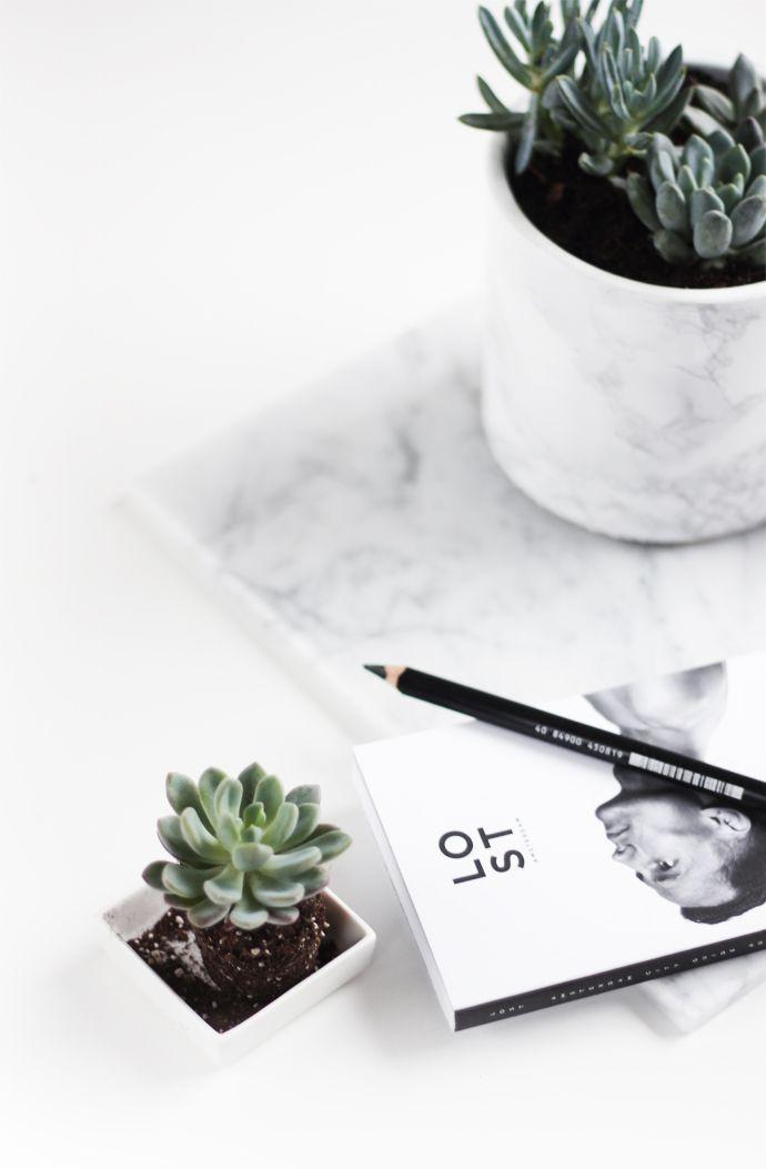 succulent | DIY | marble pot //