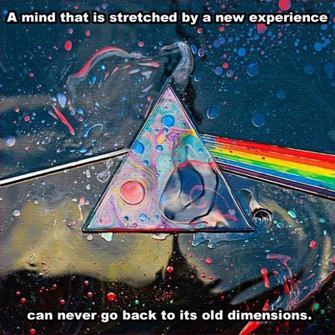 A mind that is stretched by a new experience, can never go back to it's old dimensions....