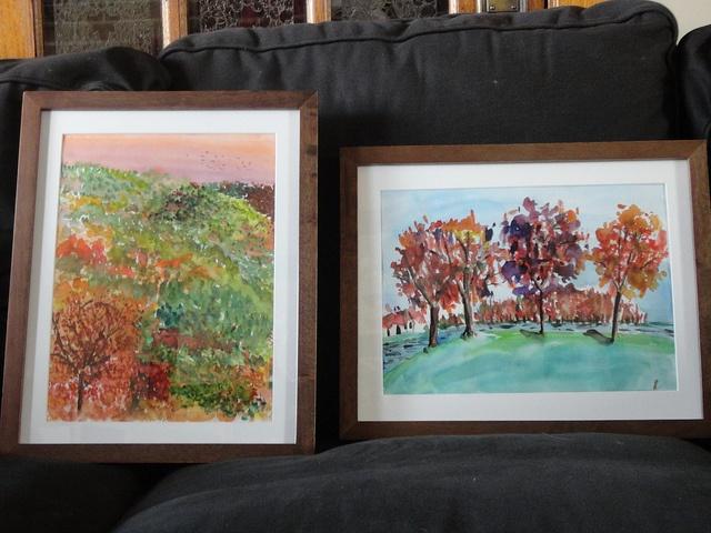 Framed watercolours