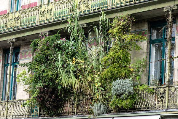 45 best balkon loggia collected by klasse im garten images on pinterest balcony garten. Black Bedroom Furniture Sets. Home Design Ideas