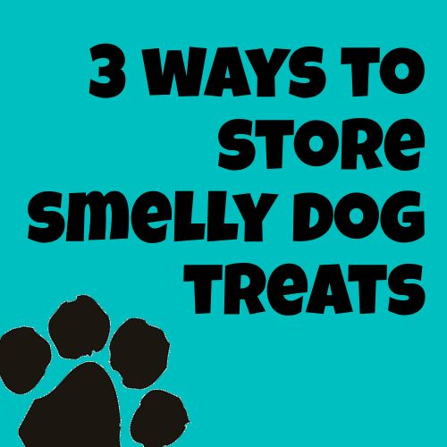 ways to store smelly dog treats