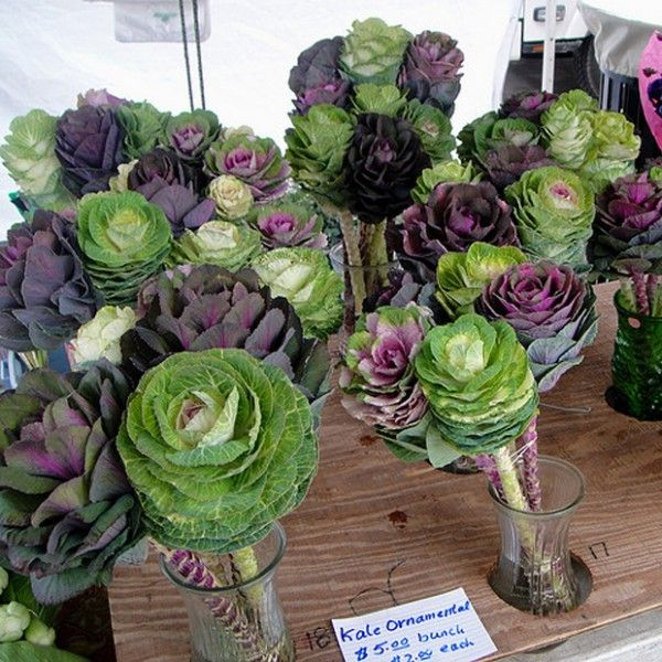 Images about wedding flower alternatives on
