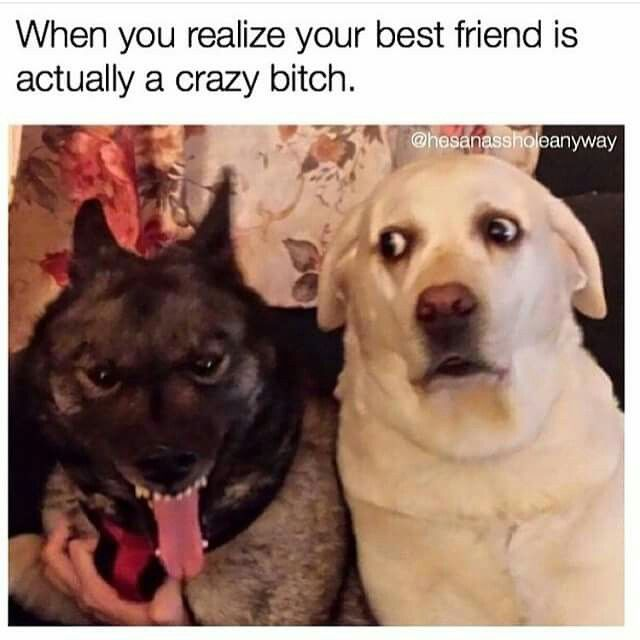 When you realize your best friend is nuts.                              …