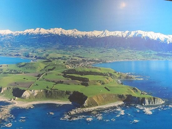 Kaikoura - wonderful place to swim + see dolphins, seals and whales.
