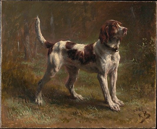 Rosa Bonheur  (French, 1822–1899) | A Limier Briquet Hound | The Metropolitan Museum of Art, New York | Catharine Lorillard Wolfe Collection, Bequest of Catharine Lorillard Wolfe, 1887 | 87.15.77 #dogsLimier Briquet, Limierbriquet, Dogs Art, Briquet Hound, Rosa Bonheur, Dogs Painting, Bonheur French, Met Museum, Metropolitan Museums
