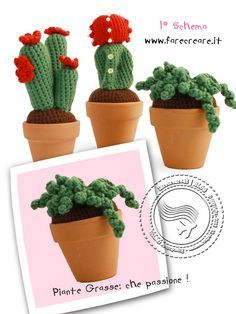 232 best images about amigurumi trees plants cactus on for Piante grasse uncinetto