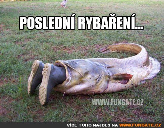 Poslední rybaření...