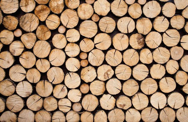 Idee: boomstammenwandje, niet behang maar echte schijven