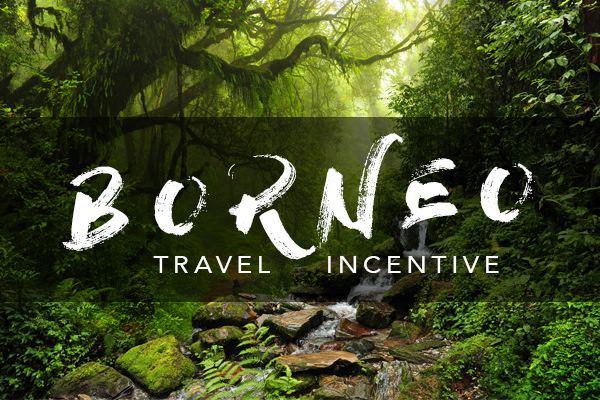 Now is your chance to ensure you and your team don't miss out on the adventure of a lifetime in Borneo through the Mannatech Australasian travel incentive.