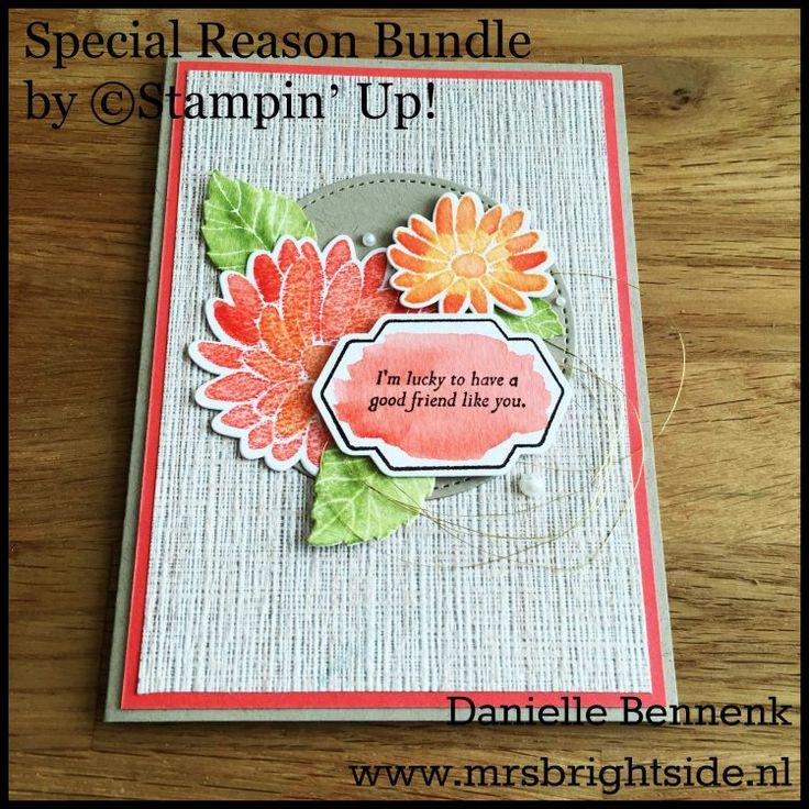 Special Reason stamp set - stylish stems framelits spring/summer catalog 2017 Stampin' Up!
