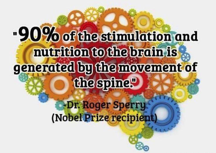 Healthy Spine Brain You