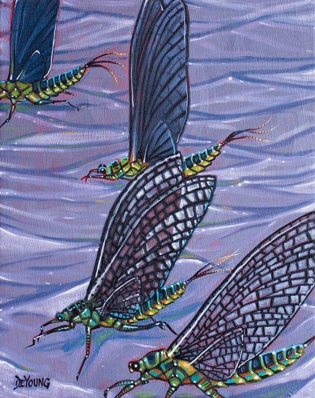 184 best images about fly fishing art on pinterest for Fly fishing art