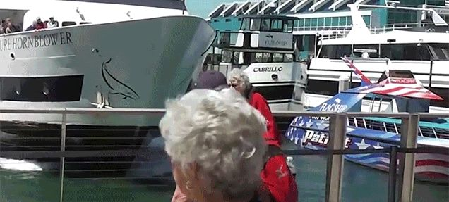 Watch a Boat Crash Straight into the Dock