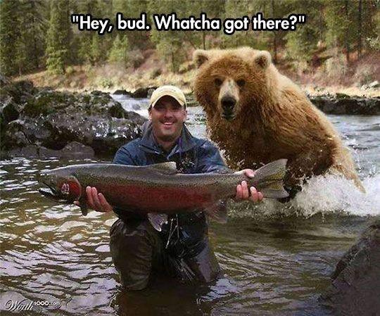 Photoshopped, but still hilarious!
