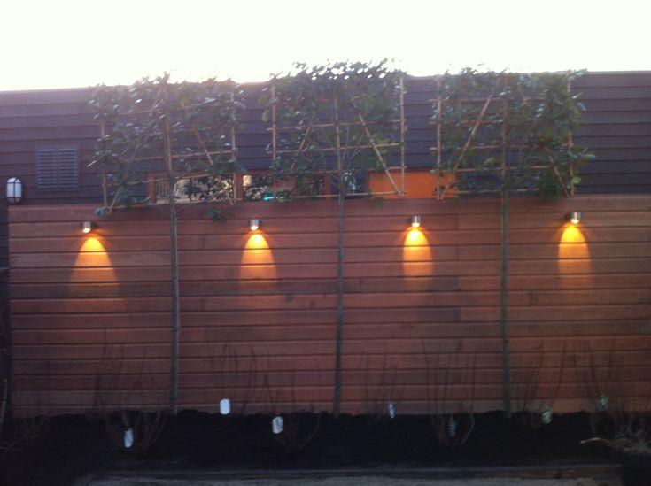 Tuinaanleg in den haag Bangkirai Schutting + Inlite Tuinverlichting met Photinia Fraseri red robin hoogstam leivorm bomen een mooie cominatie.