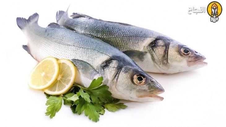 7 فوائد صحية لسمك السلمون Gout Diet Fish Oils Supplements Fish