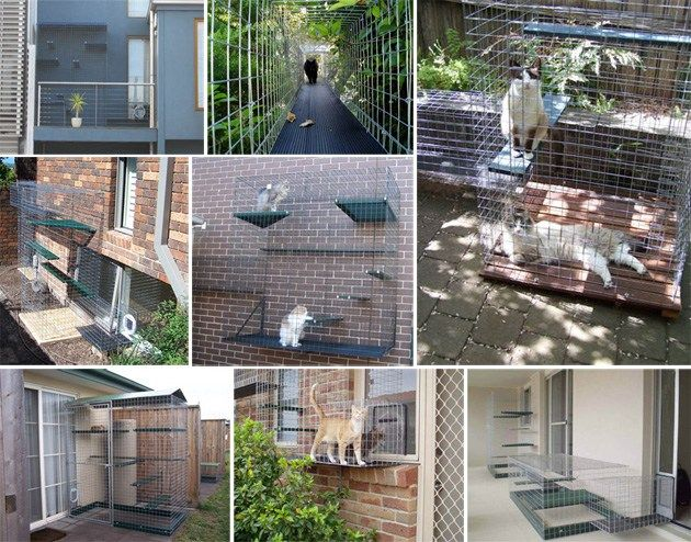 via Catio Showcase de admin em 27/04/11 If you live in Australia and you're looking to create an amazing outdoor cat enclosure for your cats, then you must check out the selection from Catnip Cat E…