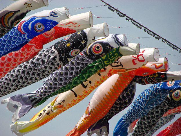 Oggi in Giappone è il Kodomo no hi, il giorno per festeggiare i bambini: http://www.nihonjapangiappone.com/pages/feste/kodomo.php   Avete appeso le vostre carpe? #kodomonohi  #golden #week #festa #giapponese