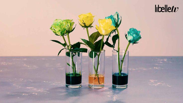 Groene of blauwe rozen? Kleur ze zelf!