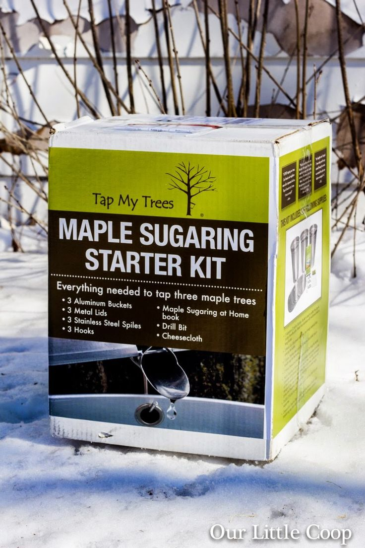 91 best maple sugaring at home images on pinterest maple sugar
