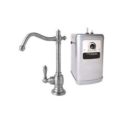 Hot water dispenser and tank