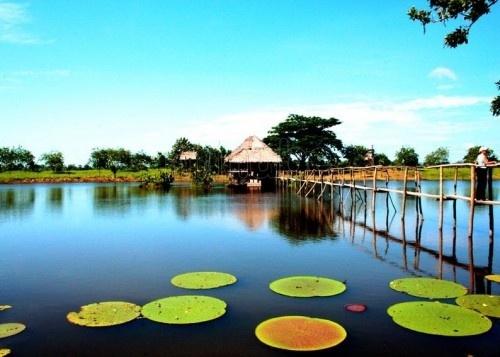 Amazonas, Leticia