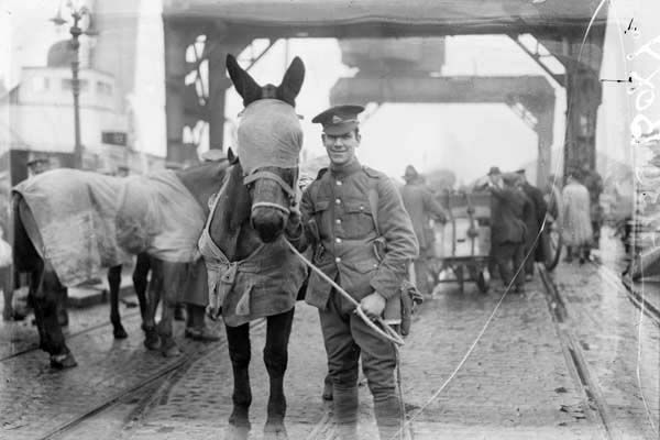 Taken at North Wall, Dublin, as soldiers of a British cavalry regiment prepare to leave Ireland with their horses. Following the signing of the Anglo-Irish Treaty in December 1921, there was a steady evacuation of British soldiers from Ireland during 1922.