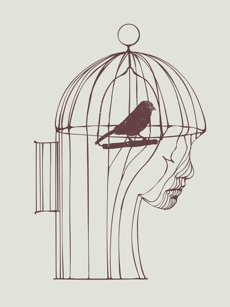 bird cage illustration in style pinterest bird cages