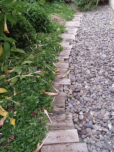 17 best images about garden edging on pinterest for Walkway edging ideas